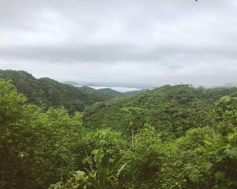 Amazonie en Colombie
