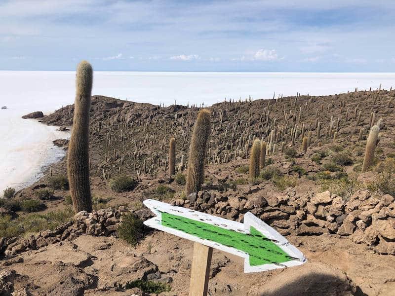 Flèche dans le desert de Uyuni en Bolivie