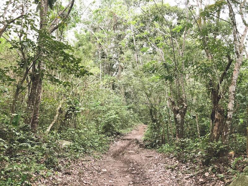 Jungle de Tayrona parc