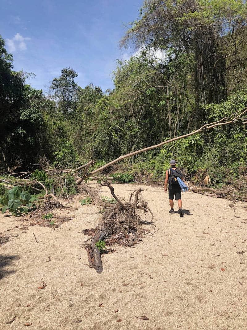 Nicolas dans la Jungle